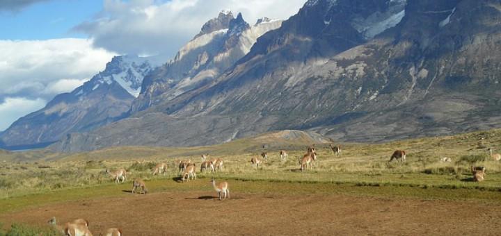 Wissenswertes über Chile
