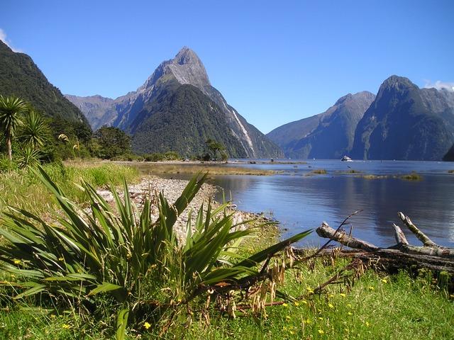 Erfahrungsbericht Ein Jahr Work and Travel in Neuseeland